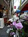 表町 by takeokaHP - panoramio (3).jpg