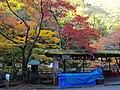 高雄にて 京都市右京区 2013.11.21 - panoramio.jpg