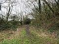 -2021-01-29 Railway embankment footpath north of North Walsham.jpg