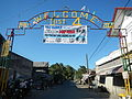 09887jfCuyapo Districts Four Welcome Two Center Nueva Ecijafvf 22.JPG