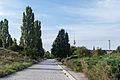 140810 Berlin Mauerpark.jpg
