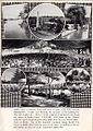 1900 Dorney Park Overview.jpg