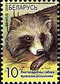 2008. Stamp of Belarus 10-2008-06-10-enot.jpg