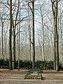 20080309220DR Tharandt Cottas Grab im Tharandter Wald.jpg