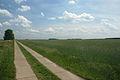 2009-05-20-barnim-by-RalfR-21.jpg