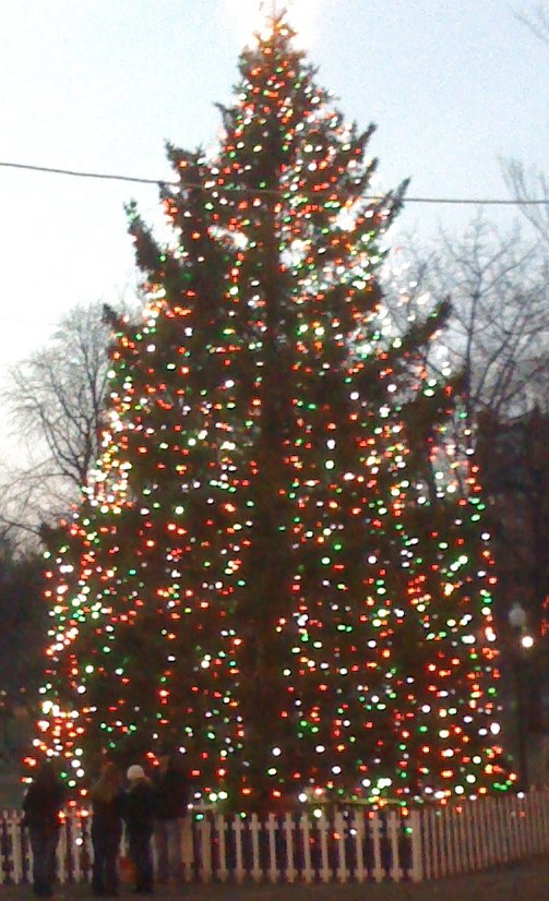 2010 Boston Halifax Christmas tree on Boston Common USA 5273771973