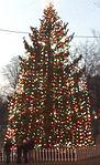 2010 Boston Halifax Christmas tree on Boston Common USA 5273771973.jpg