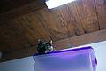 2011-10-22 19-40-12 P1100620 (8653603046).jpg