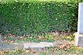 2015-09-16 GuentherZ Wien11 Zentralfriedhof Russischer Heldenfriedhof (059).JPG