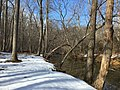 2016-02-08 13 44 34 View north down Difficult Run from the Gerry Connolly Cross County Trail between Vale Road and Lawyers Road in Oakton, Fairfax County, Virginia.jpg
