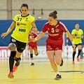 20170613 Handball AUT-ROU 9049.jpg