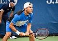 2017 US Open Tennis - Qualifying Rounds - Radu Albot (MDA) (27) def. Frank Dancevic (CAN) (36754074760).jpg