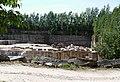 20180514125DR Lohmen WesenitzTalweg Sandsteinbruch Mühlleite.jpg