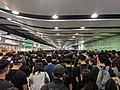 20190626 Hong Kong anti-extradition bill protest (48132237251).jpg