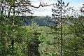 20210518. Sächsische Schweiz.Rauenstein.-032.jpg