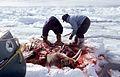 22 Walrus Hunt 1999.jpg