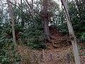 2 Chome Jindaiji Minamimachi, Chōfu-shi, Tōkyō-to 182-0013, Japan - panoramio.jpg