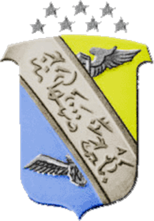 350th Fighter Group
