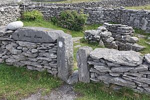 Enda of Aran - Tobar Éinne (Tobar Éanna), Saint Enda's holy well on Inis Oirr