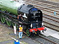 60163 Tornado 12 March 2009 Tyne Yard pic 9.jpg