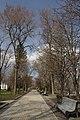 80-382-0088 Kyiv SAM 3339.jpg