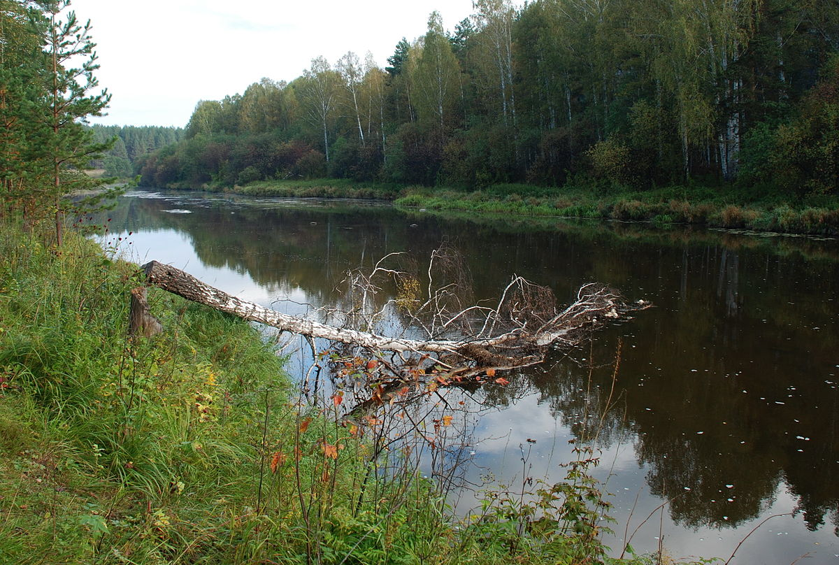 Реж (река)