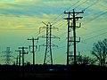 ATC 138kv Line - panoramio.jpg