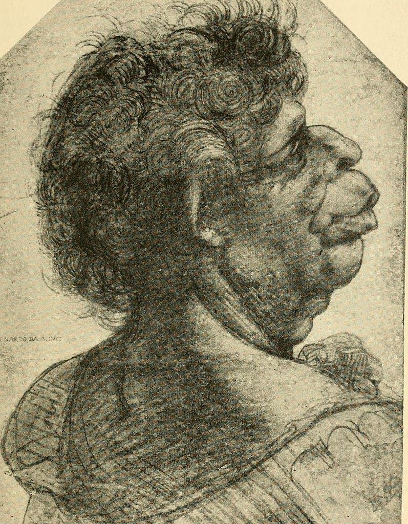Tête grotesque, caricature de Leonardo da Vinci à la Christchurch Picture Gallery d'Oxford.