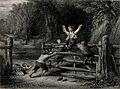 A group of children are playing on a gate in a woodland. Eng Wellcome V0039333.jpg