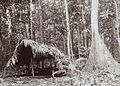 A hut in the forest beside the Sekanto river - Collectie stichting Nationaal Museum van Wereldculturen - TM-60010043.jpg