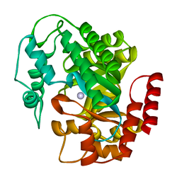 adenosine deaminase wikipedia