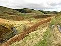 Afon Clywedog - geograph.org.uk - 601055.jpg