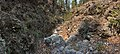 Alexander Canyon - Flickr - aspidoscelis (5).jpg