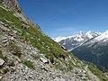 Alpine Ibex (Bouquetin) @ Path from L'Index to Col de la Gliere @ Hike to Lacs des Chéserys, Lac Blanc, Lac Cornu & Lacs Noirs @ Chamonix (15338474606).jpg