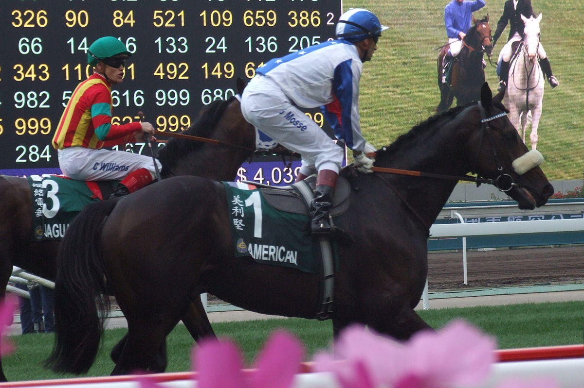 Handicap horse racing wikipedia falaconquin