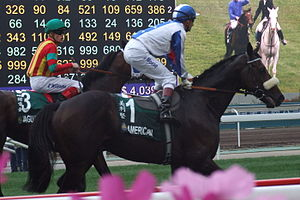 Handicap (horse racing) - Americain, a winner of the Melbourne Cup one of the most prestigious handicap races in the world.