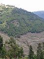 Amhara-Paysage (1).jpg