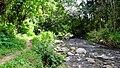 Anakkal Water Falls - panoramio (4).jpg