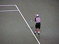 Andy Roddick SAP Open 2005 005.jpg