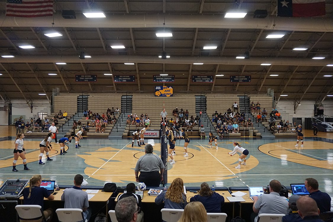 Angelo State vs. Texas A&M–Commerce volleyball 2017 17.jpg