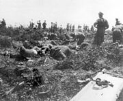 Anzac truce 24 May 1915
