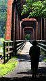 Appalachian Walking Trail (181740856).jpg