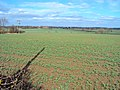 Arable land north of Thorpe Constable - geograph.org.uk - 1804293.jpg