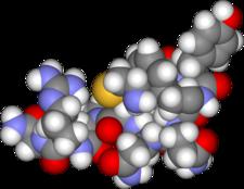Prostorový model ADH