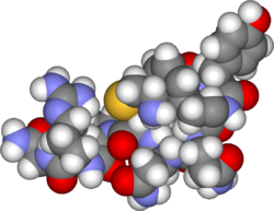 Arginino vasopresin3d.png