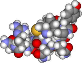Vasopressin - Image: Arginine vasopressin 3d