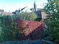 Arnstein, Germany - panoramio (1).jpg