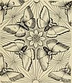 Art crafts for amateurs (1901) (14760115901).jpg