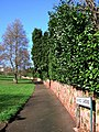 Ashfield Gardens, Torquay - geograph.org.uk - 357292.jpg