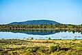 Ashurst Lake (37621734661).jpg